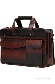 Elligator 15 inch Laptop Messenger Bag(BrownEL05)