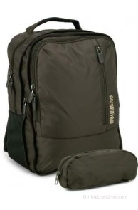 American Tourister Citi- Pro 2014 Laptop Backpack(Brown, Size - 16.1)