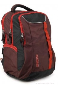 American Tourister Buzz 12 Laptop Backpack(Brown and Rust, Size - 16.5)