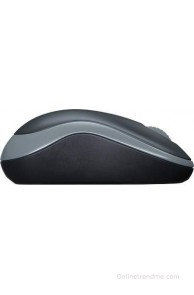 Logitech B175 Wireless Mouse(USB)
